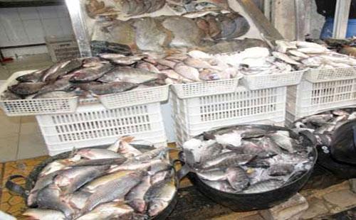 اسواق السمك