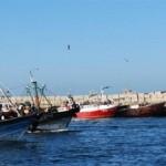 مراكب الصيد المصرية
