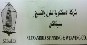 شركة الاسكندرية للغزل والنسيج