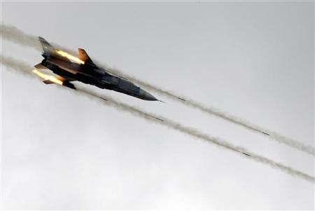 طائرة حربية, طائر, حادث