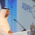 وزير الدولة الإماراتى