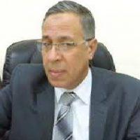 نائب رئيس مجلس إدارة بنك ناصر الاجتماعي
