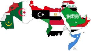 العالم العربى