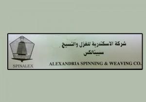 الإسكندرية للغزل والنسيج - سبينالكس