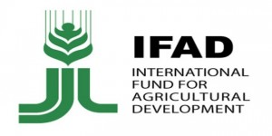 الصندوق الدولى للتنمية إيفاد