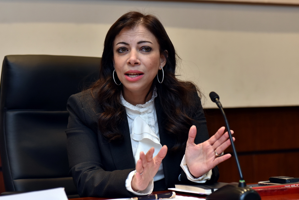 داليا خورشيد، وزيرة الاستثمار