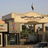 المصرية لتجارة الادوية