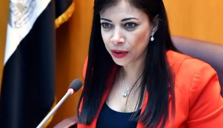 وزيرة الاستثمار