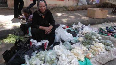 وزيرات مالية الأسر المصرية