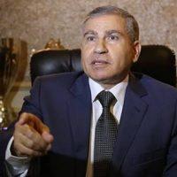 محمد على وزير التموين