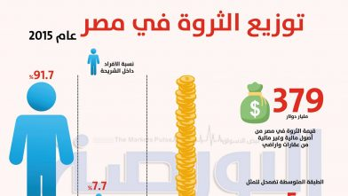 توزيع الثروات فى مصر