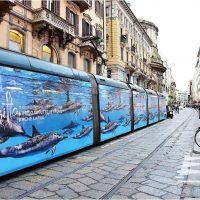 حملة الترويج السياحى فى ايطاليا (4)