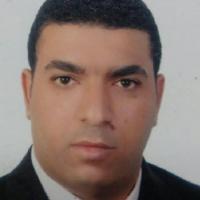 محمد عامر، المدير العام لشركة النيل للتأجير التمويلي