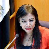 داليا  خزرشيد  وزيرة الاستثمار