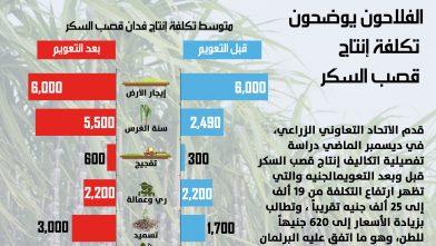 انفوجراف - تكلفة إنتاج فدان قصب السكر