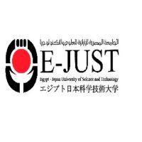 الجامعة المصرية اليابانية