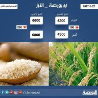 الأرز , سعر الأرز اليوم