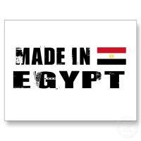 صنع فى مصر