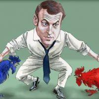 إيمانويل ماكرون الرئيس الفرنسى المنتخب (2)