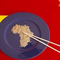 الصين فى أفريقيا
