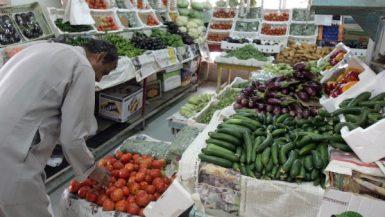 القطاع الغذائى
