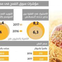 القمح فى مصر, قمح, مصر, انفوجراف