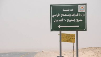 مشروع استزراع 20 ألف فدان في منطقة غرب غرب المنيا