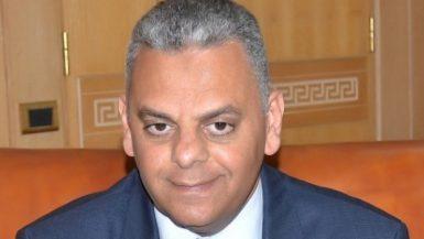الاتحاد المصرى للتأمين علاء الزهيري