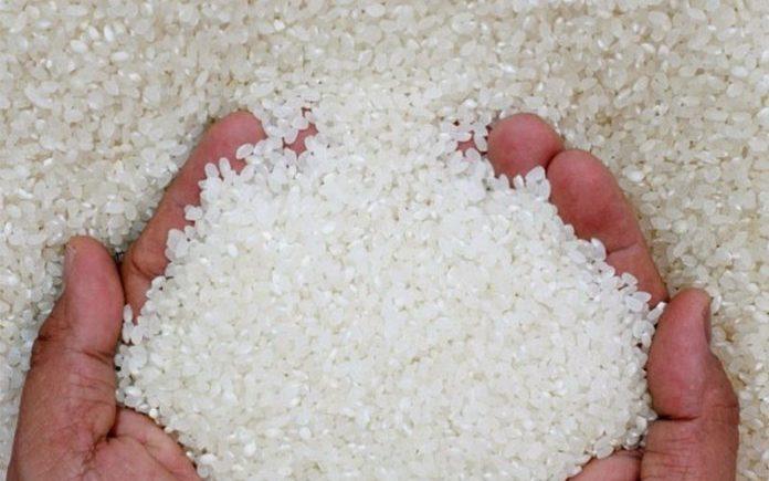 معروض «الأرز» يدفع أسعار المحلى