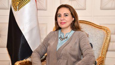 غادة لبيب، نائب وزيرة التخطيط للإصلاح الإداري