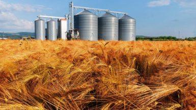صوامع القمح والحبوب