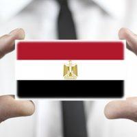 ريادة الأعمال ؛ الاقتصاد المصرى ؛ مصر