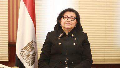 لميس نجم ؛ مستشار محافظ البنك المركزى