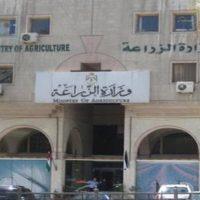 وزارة الزراعة واستصلاح الأراضى