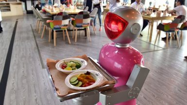 نادل روبوت
