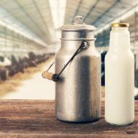 الأبقار ؛ الألبان ؛ صناعة الألبان