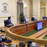 الحكومة ؛ مجلس الوزراء ؛ فيروس كورونا