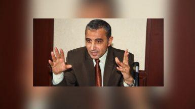 جمال هنداوى ؛ شركة سيناء للمنجنيز
